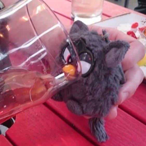 Dr Smoky Furby