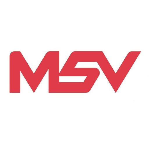 MSV Consultancy