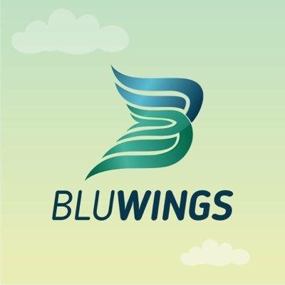 Blu Wings Marketing