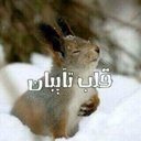Adil20_02 (@02Adil20) Twitter