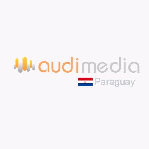 @AudimediaPY