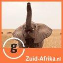 Photo of ZuidAfrikaNL's Twitter profile avatar