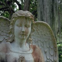 Greenwood Cemetery | Social Profile