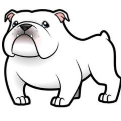 bulldog betting