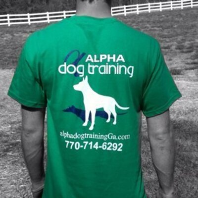 Dog Obedience Training Snellville Ga