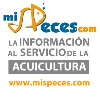mispeces | Social Profile