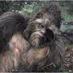 The Real Bigfoot Real Bigfoot Twitter