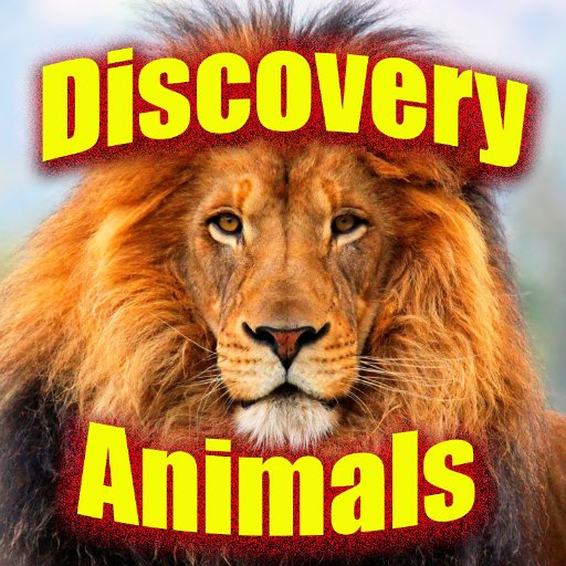 discovery animal - photo #36