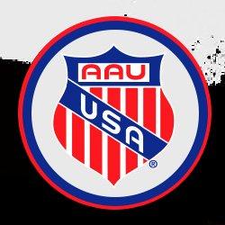 Iowa amateur athletic union