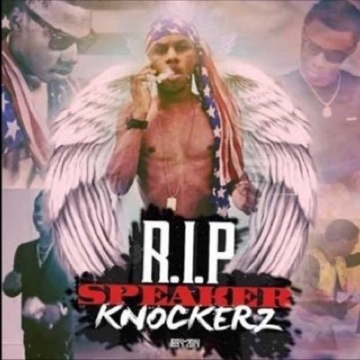 speaker knockerz so annoying