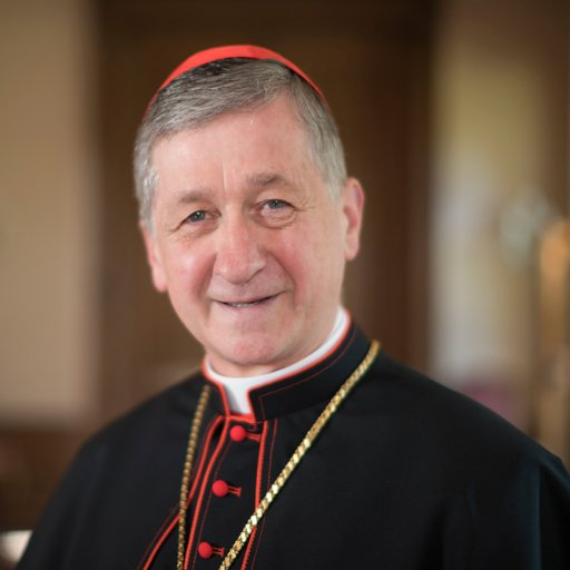 Image result for Cardinal Cupich