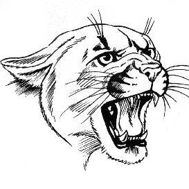 Brushton-Moira Central School logo