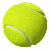 The_Tennis_Physi🎾