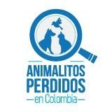 @losbuscamos_col
