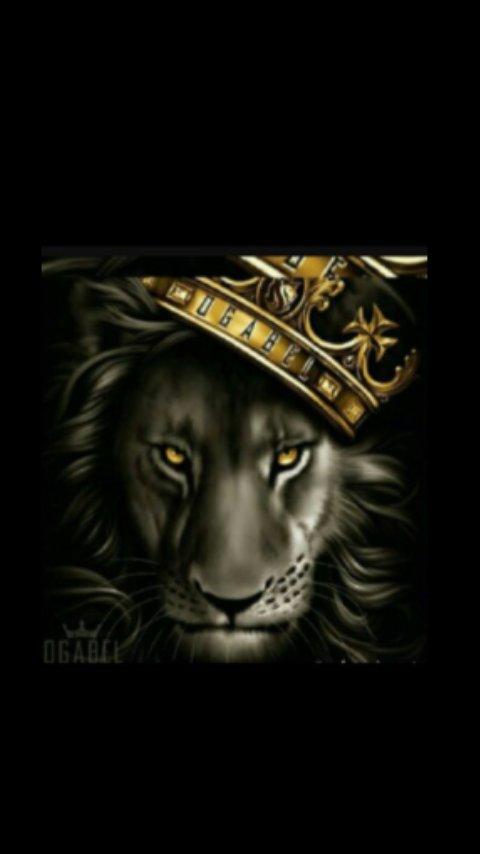 KINGG P.I.D.