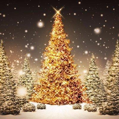 Frohe Weihnachten Minions.Christmas Wishes On Twitter Fantastisch Lustig Minions Bilder