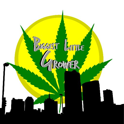 CannabisGrowGuide on Twitter: