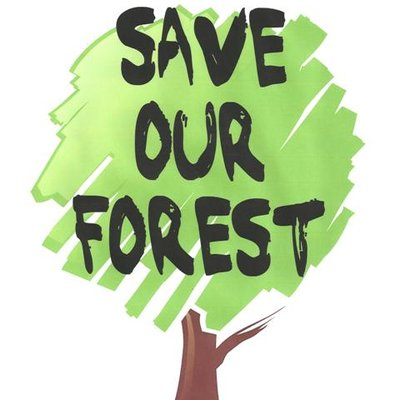 Image result for save forest