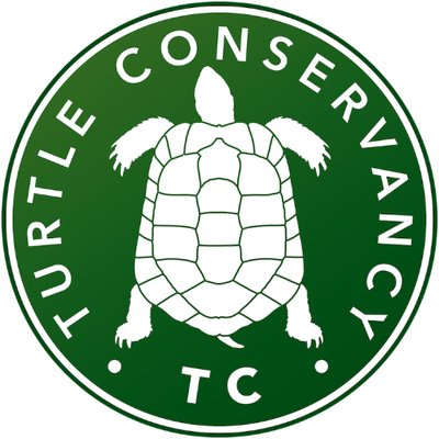 Turtle Conservancy (@turtletweets) Twitter profile photo