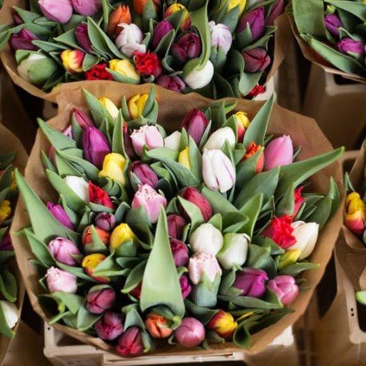 RI Flower Show