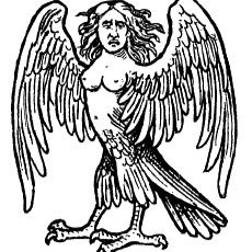 Library Harpy
