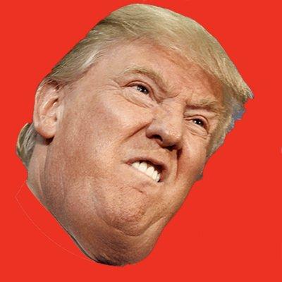 dum lump donny trum lumpdumb twitter