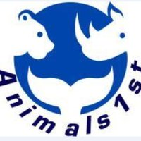 Animals1st | Social Profile