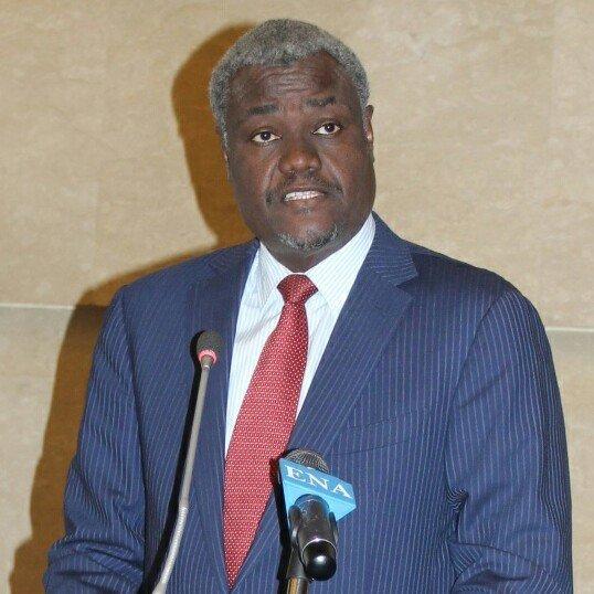 AU leader calls for visa free travel for Africans