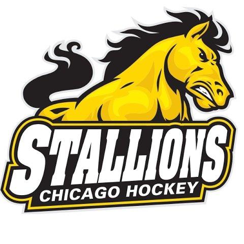 Chicago Stallions (@ChgoStallions) | Twitter