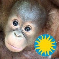 National Zoo | Social Profile