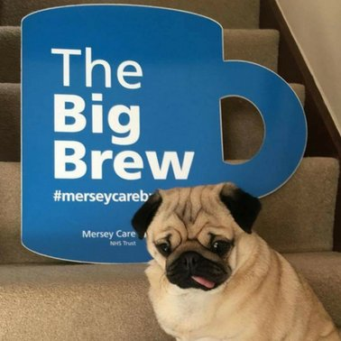 The Big Brew