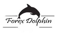 Форекс dolphin платный курс по заработку скачать бесплатно