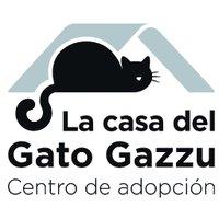 Gato Gazzu
