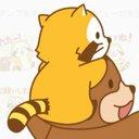 raccoon (@0177raccoon) Twitter