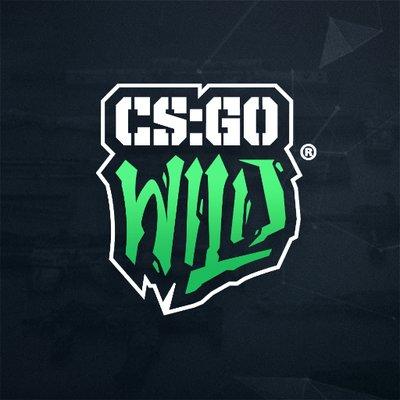 cs gowild