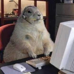 Chuck Groundhog