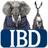 IBDeditorials