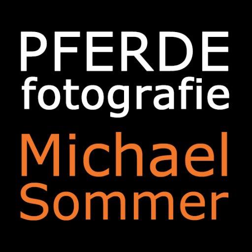 Pferdefotografie On Twitter Beste Freundin Bester Freund Des