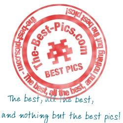 The-Best-Pics.com
