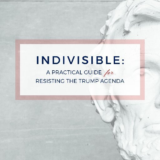 Indivisible Tampa