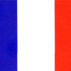 SEO France  😊