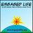 Engaged Life