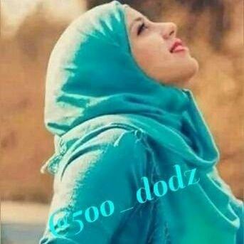 5oo_dodz