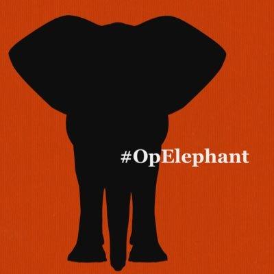 #OpElephant_   Ⓥ