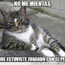 Victor Jimenez (@11viccat) Twitter