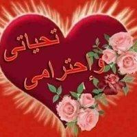 محمدبدوى محمد
