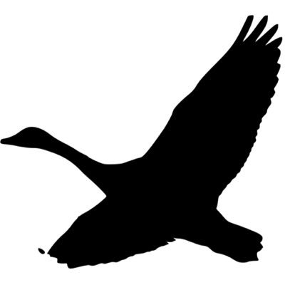 Free Movement (@freemovementlaw) Twitter profile photo