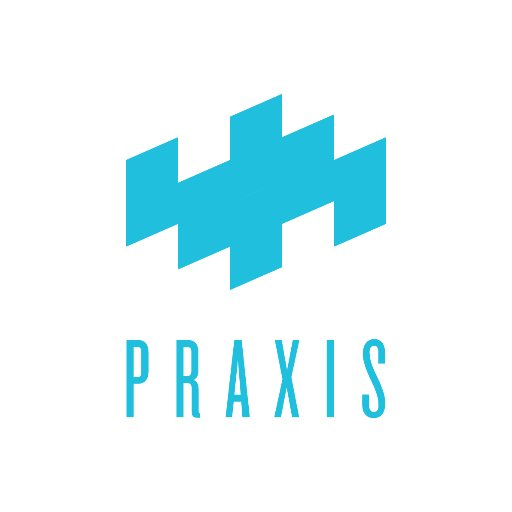 Image result for praxis labs