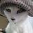 ウズベ・鷲猫 (@washinya)