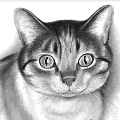 çizim Teknikleri On Twitter Karakalem Ağaç Kütüğü Nasıl çizilir